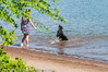 _DSC5223.jpg (orig_lowolf) Tags: people usa dog oregon nikon flickr lakeoswego georgerogerspark d300s chasingwater willimateriver
