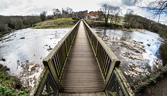 Crossing. (CWhatPhotos) Tags: pictures wood old uk bridge england eye river that lens foot prime photo wooden ruins crossing durham with view cross angle image zoom photos footbridge pics north wide over picture pic olympus images wear east fisheye photographs ii which has span mk priory contain omd fsh containing spanning em10 finchale samyang cwhatphotos pjotograph