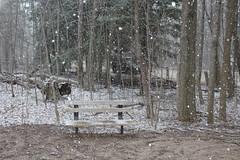 IMG_0411 ( Szczep Wodny Batyk ) Tags: zima wiosna brucetrail snieg wedrowka szczepwodnybaltyk szczepbaltyk silvercreekconservationarea wedrownicy druzyna16ta starsiharcerze