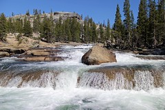 Have you learned the secret from the river? (pakhouse@att.net) Tags: california river outdoor yosemite yosemitenationalpark wilderness sierras tuolumne tuolumneriver yosemitehighcountry