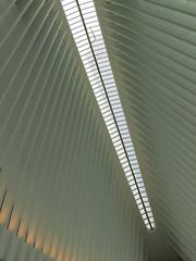 Oculus #6 (Keith Michael NYC (1 Million+ Views)) Tags: nyc newyorkcity ny newyork path manhattan worldtradecenter calatrava wtc oculus santiagocalatrava downtownnewyork downtownmanhattan transportationhub 1wtc oneworldtradecenter