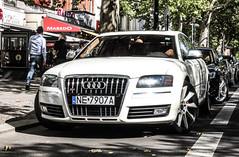 Poland (Elblag) - Audi S8 D3 (PrincepsLS) Tags: berlin germany poland plate polish ne license audi spotting d3 s8 elblag