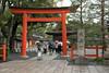20160229-095153_5K_80 (pya) Tags: kyoto 京都 camellia plumblossoms jonangu 梅花 茶花 城南宮 椿花 weepingplumblossoms