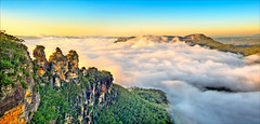 Sea of clouds / Three Sisters / Blue Mountains (Young Ko) Tags: travel blue trees light sea sky holiday green nature yellow rock fog clouds composition sunrise landscape interesting nikon rocks colorful flickr nsw threesisters katoomba firstlight foggysunrise bluemountainsechopoint clouds