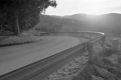 Asiago (Federico Bevilacqua 93) Tags: analog strada kodak canona1 inverno asiago montagna tmax100 analogico
