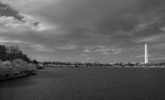 Dark sky over DC (CTfoto2013) Tags: light shadow sky blackandwhite bw lake storm building blancoynegro beach water monochrome skyline architecture clouds dark lumix washingtondc spring eau cityscape waterfront outdoor stormy nb bn ombre panasonic shore lumiere cherryblossoms serene cote washingtonmonument iconic printemps orage tidalbasin obelisque cerisiers nuageux symboles celebre gx7 micro43camera mirrorlesscamera