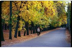 Autumn. Kramatorsk. 2012 (Alimkin) Tags: донецкаяобласть украинаukraine краматорскkramatorsk донецкаяобластьdonetskregion