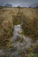 Rivulet (mag_mouse) Tags: water wales landscape moody gloom rhostryfan