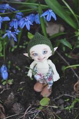 Dean (maselanka) Tags: flowers garden spring elf fairy fl custom fairyland rp eff rlp elves popo blooming eff17 realpuki