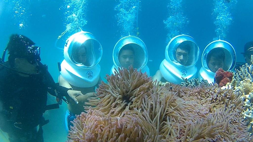 dịch vụ đi bộ dưới đáy biển ngắm san hô