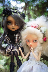The duo (0ctavie) Tags: ooak full planning wig groove pullip custom custo jun ato ovie nahh octavie natrume 0ctavie 0vie