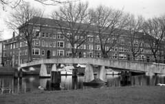 Ducks & Birds (Arne Kuilman) Tags: bridge netherlands amsterdam birds 35mm iso400 gulls nederland rangefinder ganzen brug agfa meeuwen schneiderkreuznach apx400 adox radionar polomat1