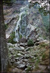 Ireland 1981 (3_17) (Hans Kerensky) Tags: road county trip ireland 120 film waterfall august safety ii powerscourt 1981 wicklow enniskerry kodacolor 5035 plustek opticfilm