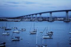 [3 / 52] (Fritter and Waste) Tags: california ca canon sandiego coronado unedited coronadobridge tiltshifteffect sooc eos60d sandiegocoronadobridge