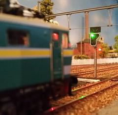 Margrietje in werking: rood licht (Ignace Vanbiervliet) Tags: ho treinen nmbs modelspoor