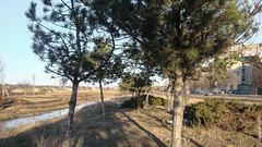 , 10  / Balti, cartierul 10 / 10th District, Balti (geoapimd) Tags: md moldova balti moldavia robinet   beltsy 10thdistrict  raut    bli   10 cartierul10 robineteav eav