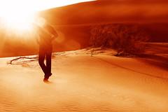 M A R T I A N (Vafa Nematzadeh Photography) Tags: mars sun sunlight sunrise sand desert iran earth redsand ridleyscott future silkroad discovery kashan esfahan martian dreamscape nationalgeographic photooftheday carlsagan natgeo redplanet historicroute maranjabdesert aranbidgol moontomars thephotosociety vafaphotography marsone2027 baslansdrop