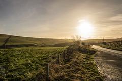 The Border of the Scottish Borders (Colin Myers Photography) Tags: road colin sunrise photography scotland border scottish sunny winding borders myers midlothian scottishborders colinmyersphotography