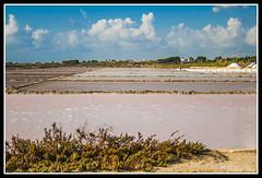 IMG_1775 (rinosaltini1) Tags: saline sicilia trapani marsala dello mozia riserva stagnone