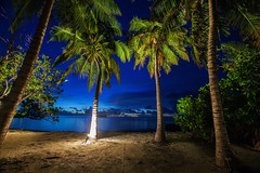 Palm Tree Night (-*HJS*-) Tags: ocean nightphotography trees sea vacation sky moon holiday beach water weather clouds canon landscape lights coast lowlight sand seascapes tide ngc indianocean palmtrees tropical fullframe maldives manfrotto slowshutterspeed longshutterspeed 1635mm beacheslandscapes 5dmk2