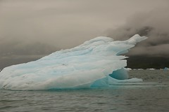 Natural Sculptures in Ice Columbia Glacier Ice Mlange Alaska (eriagn) Tags: travel blue red mist ice expedition nature wet weather fog alaska photography lowlight melting kayak unique patterns exploring shapes overcast glacier adventure silence mysterious recreation iceberg tones magical stranded tidal mlange remnants gravel drizzle glacial columbiaglacier princewilliamsound chugachmountains tidewaterglacier changingshape eriagn ngairelawson natureasanabstractartist ngairehart glacialblues