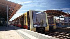 Neue Zge fr die Berliner S-Bahn - Auenansicht (metr0p0litain) Tags: transport sbahn publictransport nahverkehr designstudie designstudy