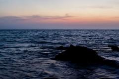 Roca de mar (Races annimas) Tags: costa arbol atardecer mar colombia pescador caribe pescar pelcano islafuerte arbolquecamina