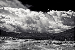 Athabaska River Revisited (martincarlisle) Tags: travel trees sky blackandwhite canada mountains monochrome clouds landscape rockies scenery rocks parks alberta rivers rockymountains nationalparks gravel jaspernationalpark nwn canadianrockies canoncameras athabaskariver niksoftware tamronlenses rockymountainparks silverefexii