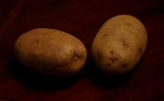 Two Million Dollar Idea (Day 35/366) (iamtony97) Tags: two table idea photo potatoes desk potato dollar million 365
