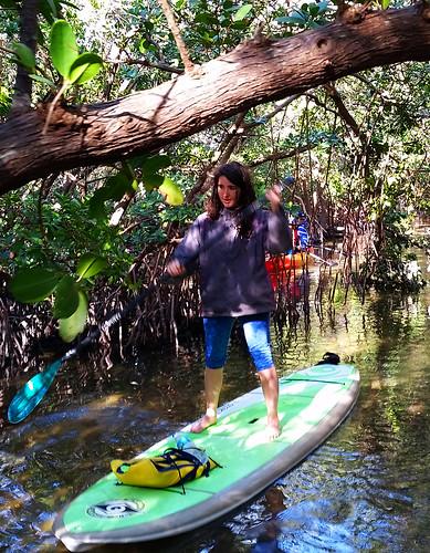 2_10_16 Kayak Paddleboard Tour Sarasota FL 26