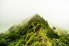 Haiku Stairs (ElginCon) Tags: travel sky mountain mountains nature stairs outdoors hawaii nikon heaven paradise haiku time oahu pics earth hike stairway wanderlust adventure explore photograph stairwaytoheaven haikustairs explorehawaii 500px earthpics d3300 ifttt earthporn hikehi oahuhiker