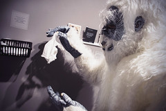 The gloves don't fit the Boston Yeti's huge hands, but it didn't dampen his enjoyment! (PRCBoston) Tags: boston polaroid photography prc bostonsnow bostonuniversity instantphotography cryptid leftofcenter photographicresourcecenter bostonphotography impossibleproject bostoncold instagram offthefridge bostonyeti instantlyyoursaoneofakindexhibitionofinstantinstagramphotography instantlyyoursprc