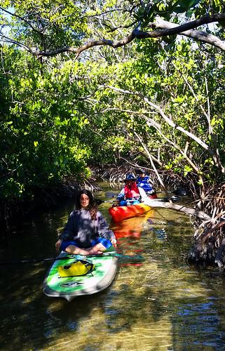 2_10_16 Kayak Paddleboard Tour Sarasota FL 14