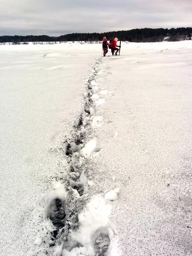 Crossing Sukhona river