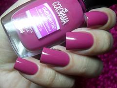 Colorama - Pimenta Rosa (Barbara Nichols (Babi)) Tags: rosa colorama pimentarosa