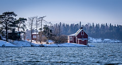 The perfect getaway (Mika Laitinen) Tags: ocean winter red sun snow tree nature water rock suomi finland landscape island bay helsinki cabin getaway balticsea shore isle vuosaari uusimaa kallvik ef70200mmf4lisusm canon7dmarkii