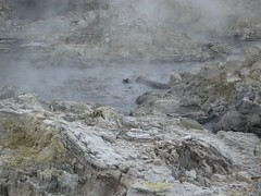 Hells Gate Geothermal Park, North Island, New Zealand (singaporebugtracker) Tags: newzealand rotorua northisland vol taupo geothermal steamvents taupovolcaniczone volcaniclake sulpur boilingmudpool singaporebugtracker hellsgategeothermalpark