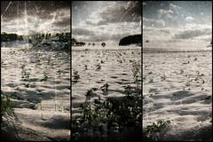 Paysage neige (pitchoun9999) Tags: neige paysage triptyque