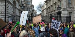 Downing Street Protest 1 (stevebell) Tags: london westminster protest police demonstration whitehall downingstreet davidcameron taxhaven taxavoidance nikond7100 stevebell