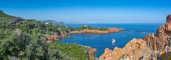 Pointe du Cap Roux (Luciano DM) Tags: sea mer french landscape photo nikon riviera photographie view cannes perspective cte provence paysage rivage dazur littoral alpesctesdazur