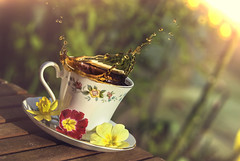 coffee break (ASPphotographic) Tags: flowers cup coffee sunshine composition angle bright artistic bokeh splash