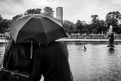 Amoureux  Paris sous la pluie (Pixel Carr) Tags: paris noiretblanc pluie bateau montparnasse enfant jeu amoureux maquette parapluie jardinduluxembourg