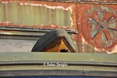 "SR 114 ""Bucegi"" (SergiuSV) Tags: truck army offroad 4x4 4wd sr114 lorry romania petrol sr v8 bucegi carpati rosu 44 offroadvehicles steagul steagulrosu"