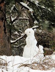 Snow People (merripat) Tags: snow snowman colorado snowmen snowpeople