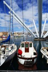 Spring #nikon #mynikon #nikonian #macro #landscape #seaside #nikond3200 #genova #port #Bigo (zuiko94) Tags: macro port landscape seaside nikon genova bigo nikond3200 nikonian mynikon