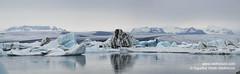 shs_n8_060084 pan (Stefnisson) Tags: panorama ice berg landscape iceland glacier iceberg gletscher glaciar sland icebergs jokulsarlon breen pana jkulsrln ghiacciaio jaki vatnajkull jkull jakar s gletsjer ln  glacir sjaki sjakar panrama stefnisson