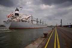 GekiStar (larry_antwerp) Tags: port ship belgium belgië vessel antwerp 比利時 antwerpen abes 船 schip بندر کشتی 海港 katoennatie ベルギー 比利时 港口 船舶 ميناء سفينة 安特卫普 بلجيكا 港湾 בלגיה אונייה бельгия אנטוורפן 항구 벨기에 선박 بلژیک बेल्जियम アントウェルペン 安特衞普 안트베르펜 أنتويرب פארט जलयान gekistar 9470844