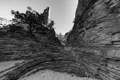 (o texano) Tags: texas desert canyon westtexas guadalupemountainsnationalpark guadalupemountains chihuahuandesert devilshall