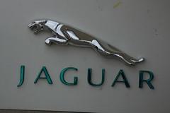 Jaguar Sign, 74th Members' Meeting (f1jherbert) Tags: sony meeting motor alpha circuit goodwood 65 members 74th a65