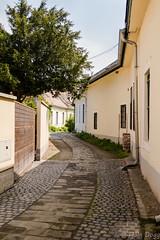 street in Szentendre (Fjola Dogg) Tags: canon europa europe hungary centraleurope evropa szentendre evrpa ungverjaland fjoladogg fjladgg canonpowershotg7x canong7x